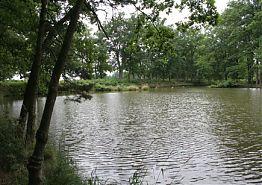 Rybolov na rybníce Podtrubí pod Ponědrážským rybníkem.